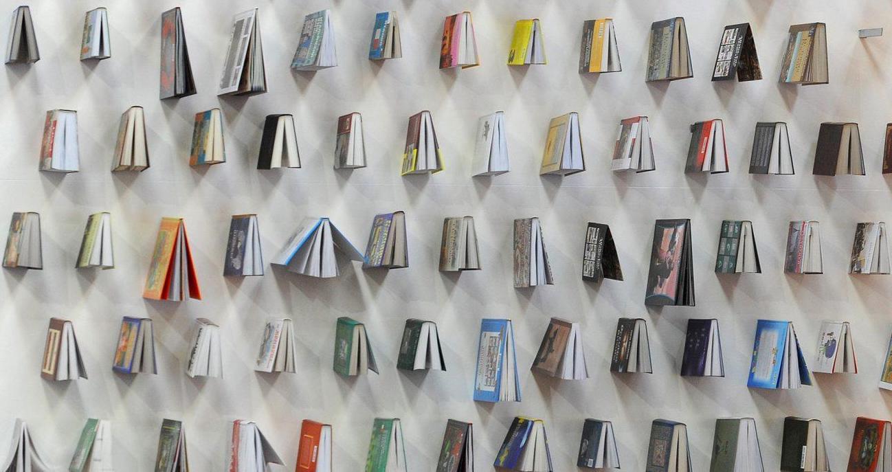 libri di colore diverso appesi su una parete